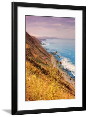 Sonoma Coast Mist-Vincent James-Framed Photographic Print