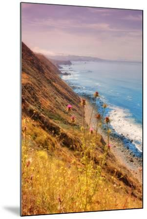 Sonoma Coast Mist-Vincent James-Mounted Photographic Print