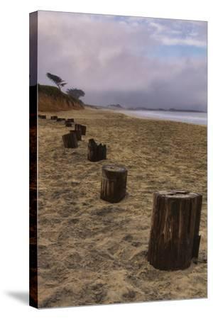 Beach Posts at Half Moon Bay-Vincent James-Stretched Canvas Print