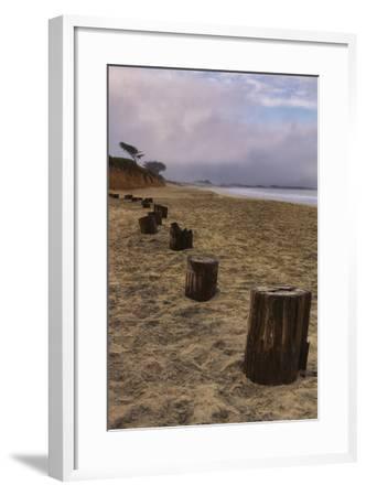 Beach Posts at Half Moon Bay-Vincent James-Framed Photographic Print