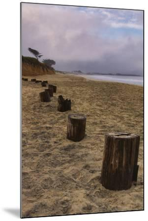 Beach Posts at Half Moon Bay-Vincent James-Mounted Photographic Print