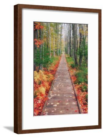 Wild Garden of Acadia Path-Vincent James-Framed Photographic Print