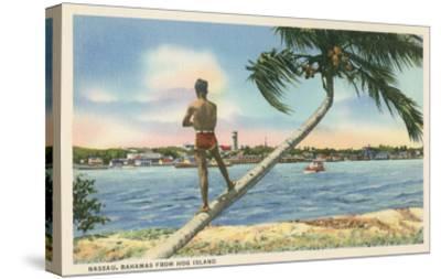 Nassau, Bahamas, Hog Island--Stretched Canvas Print