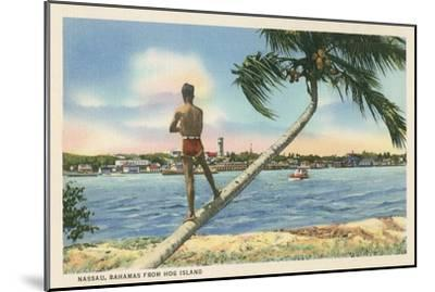 Nassau, Bahamas, Hog Island--Mounted Art Print
