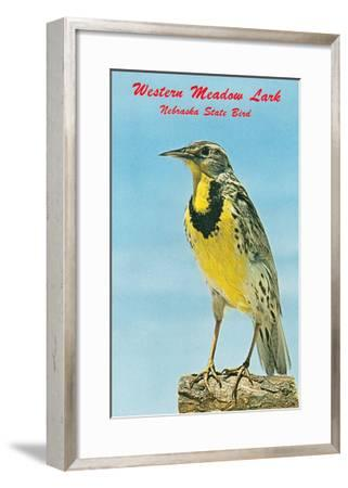 Western Meadowlark--Framed Art Print