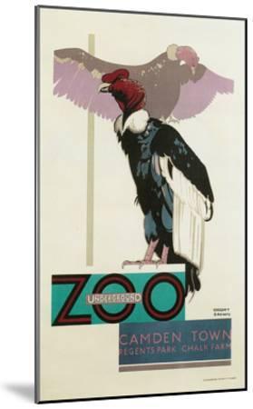 Buzzards, London Zoo--Mounted Art Print