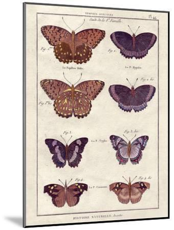 Histoire Naturelle 1-Terrence Wesley-Mounted Art Print