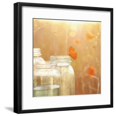 Butterfly Perch-Mandy Lynne-Framed Art Print