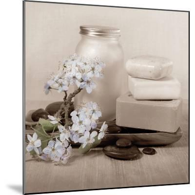 Hydrangea and Soap-Julie Greenwood-Mounted Art Print
