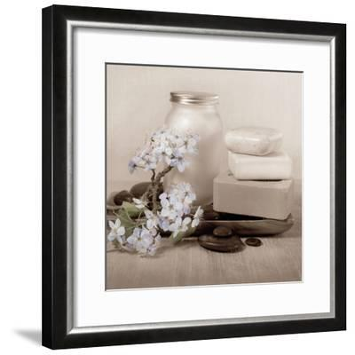Hydrangea and Soap-Julie Greenwood-Framed Art Print