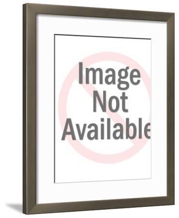 Undersea pattern-Pop Ink - CSA Images-Framed Art Print