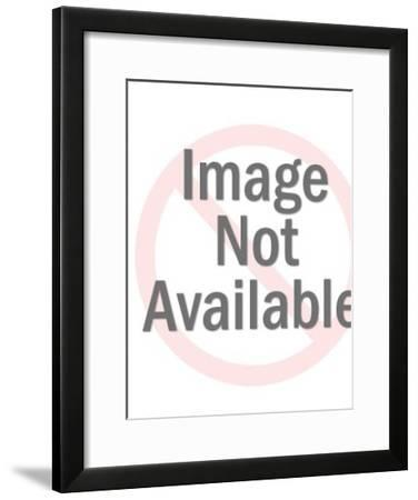 Businessman Speaking-Pop Ink - CSA Images-Framed Art Print
