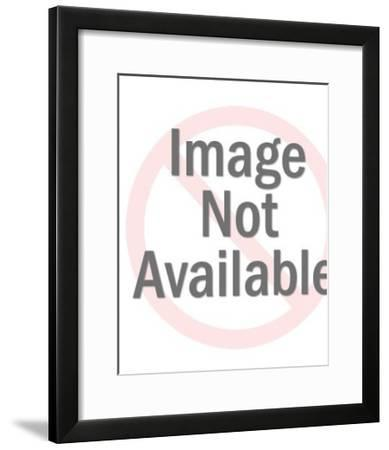 Couple in Jail and Woman on The Other Side-Pop Ink - CSA Images-Framed Art Print