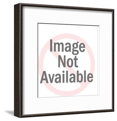 Globe and Frame-Pop Ink - CSA Images-Framed Art Print