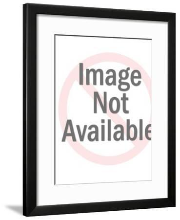 Church and state-Pop Ink - CSA Images-Framed Art Print