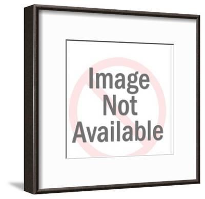 Yak-Pop Ink - CSA Images-Framed Art Print