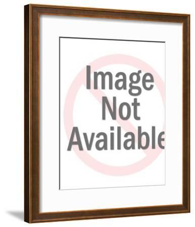 Eagle on a Globe-Pop Ink - CSA Images-Framed Art Print