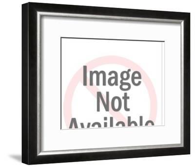 Mean dog-Pop Ink - CSA Images-Framed Art Print