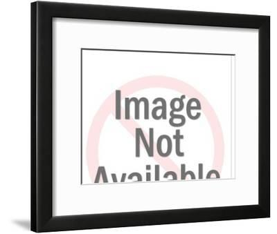 Greyhound-Pop Ink - CSA Images-Framed Art Print