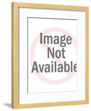 Building-Pop Ink - CSA Images-Framed Art Print
