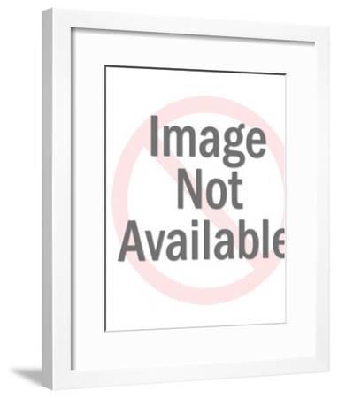 Bunny Holding Flowers-Pop Ink - CSA Images-Framed Art Print