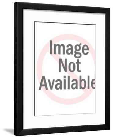 Cute Animals-Pop Ink - CSA Images-Framed Art Print