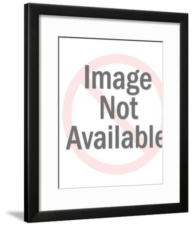 Bird Pattern-Pop Ink - CSA Images-Framed Art Print