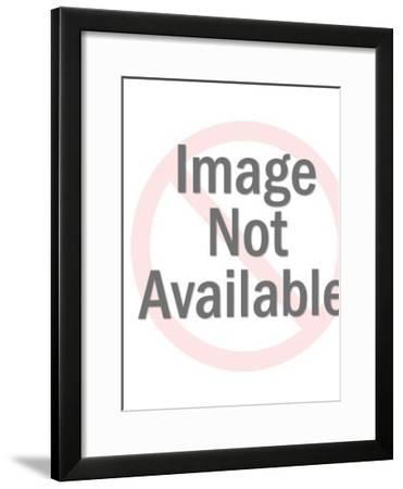 Siamese Cat-Pop Ink - CSA Images-Framed Art Print