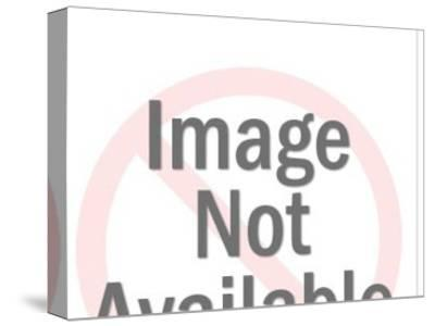 Close-up of Couple Talking-Pop Ink - CSA Images-Stretched Canvas Print