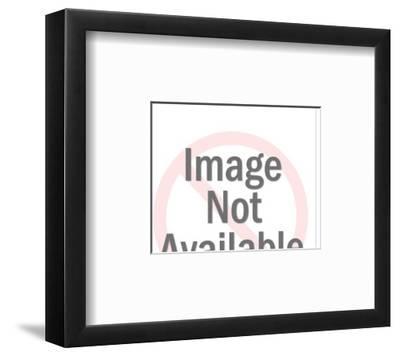 Flamingos-Pop Ink - CSA Images-Framed Art Print