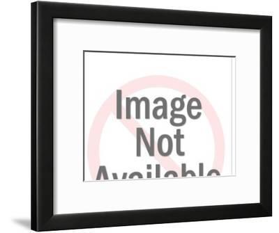 Paper Doll Clothes-Pop Ink - CSA Images-Framed Art Print