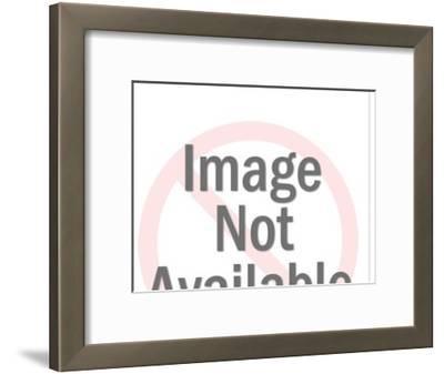 Office of Logging Camp-Pop Ink - CSA Images-Framed Art Print