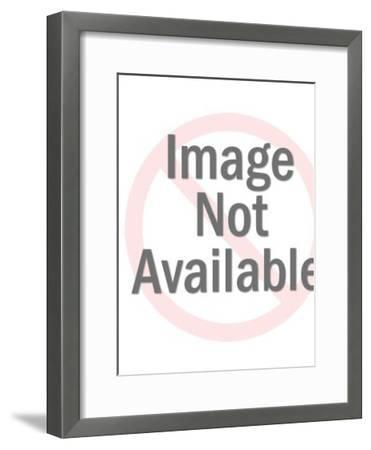 Baseball Game-Pop Ink - CSA Images-Framed Art Print