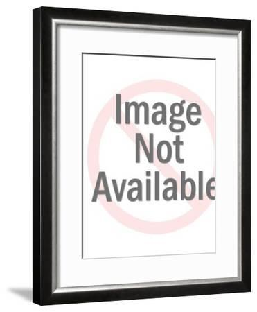 Traffic Signal on Post-Pop Ink - CSA Images-Framed Art Print