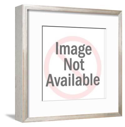 Fishing Pole Reel-Pop Ink - CSA Images-Framed Art Print