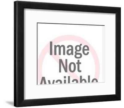 Four Floating Animals-Pop Ink - CSA Images-Framed Art Print