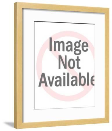 Color Block Pattern-Pop Ink - CSA Images-Framed Art Print