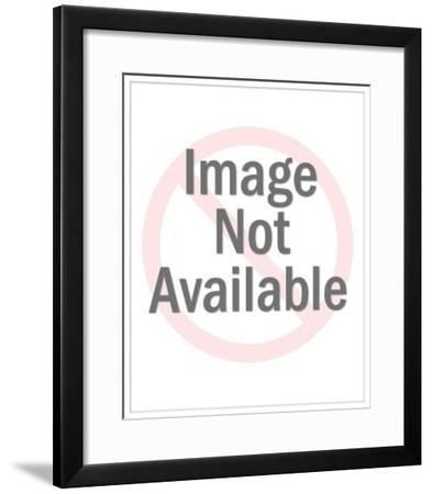 Janitor Sweeping-Pop Ink - CSA Images-Framed Photo