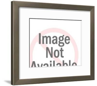 Couple With Red Arrows-Pop Ink - CSA Images-Framed Photo