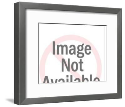 Man Driving Track Tractor-Pop Ink - CSA Images-Framed Photo