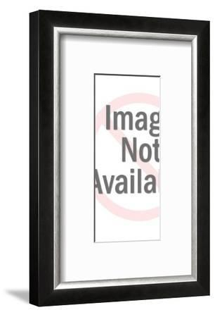 Silver Spaceman-Pop Ink - CSA Images-Framed Photo