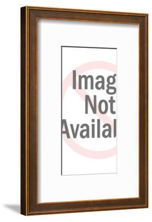Woman Wearing Pink Pantsuit-Pop Ink - CSA Images-Framed Photo