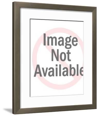 White Toilet-Pop Ink - CSA Images-Framed Photo