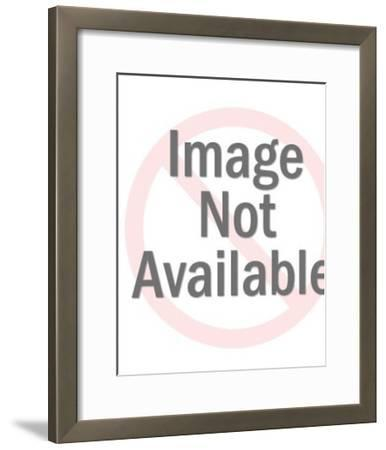 Plastic Toy Cow-Pop Ink - CSA Images-Framed Photo