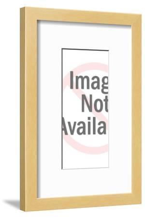 Figurine of a Man-Pop Ink - CSA Images-Framed Photo