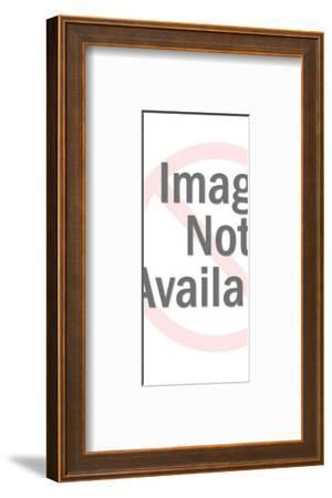 Figurine of a Boy-Pop Ink - CSA Images-Framed Photo