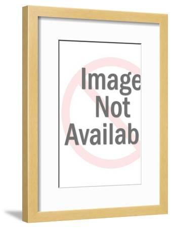 Three People Standing On Top Of The World-Pop Ink - CSA Images-Framed Photo