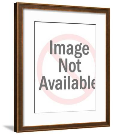 Space King Astronaut-Pop Ink - CSA Images-Framed Photo