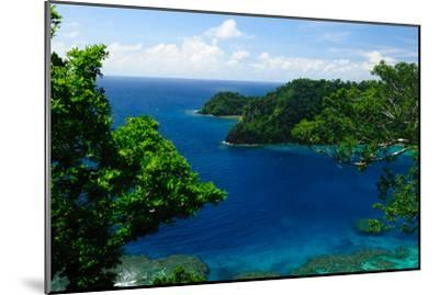 Horse Shoe Bay, Fiji, South Pacific, Pacific-Bhaskar Krishnamurthy-Mounted Photographic Print