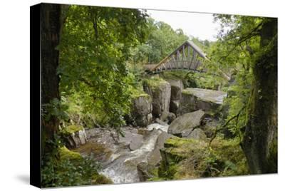 Bracklinn Falls, Callander, Loch Lomond and Trossachs National Park, Stirling, Scotland, UK-Gary Cook-Stretched Canvas Print